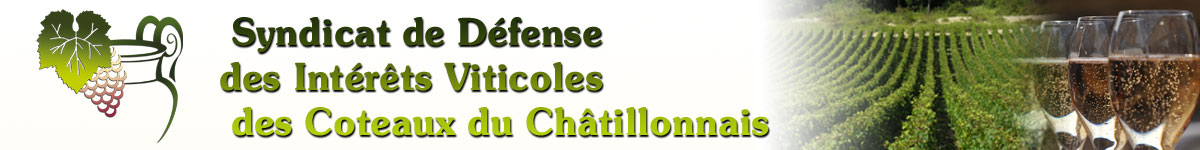 Bandeau Route du crémant du Châtillonnais