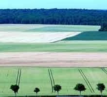 Paysage de Bissey-la-Côte