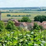 Larrey vue des vignes1 (800x521)