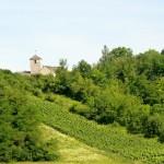 Mont Lassois2 (800x518) (2)